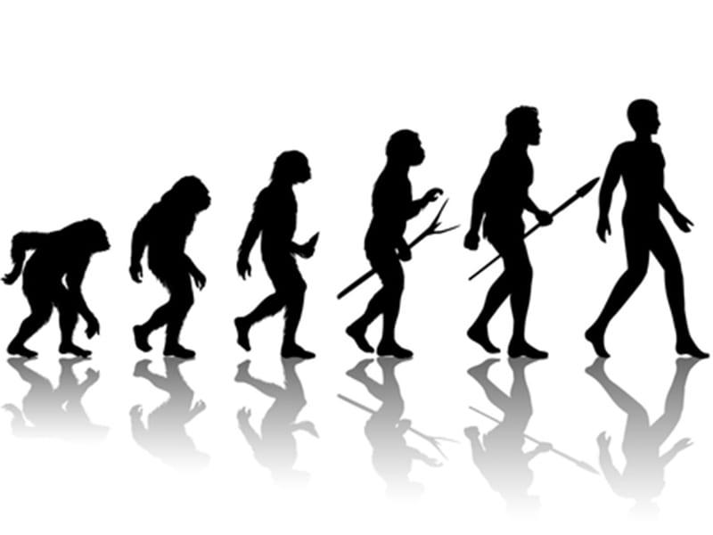 DEJAN HAMPELIĆ: EVOLUCIJA ILI DEVOLUCIJA?