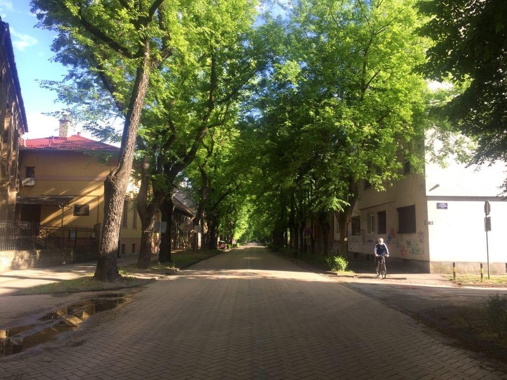 Ulica braće Radić Subotica