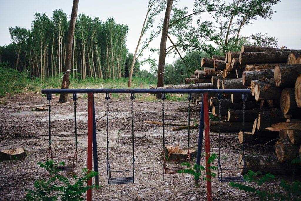 Seča šume na levoj obali Tise uznemirila građane