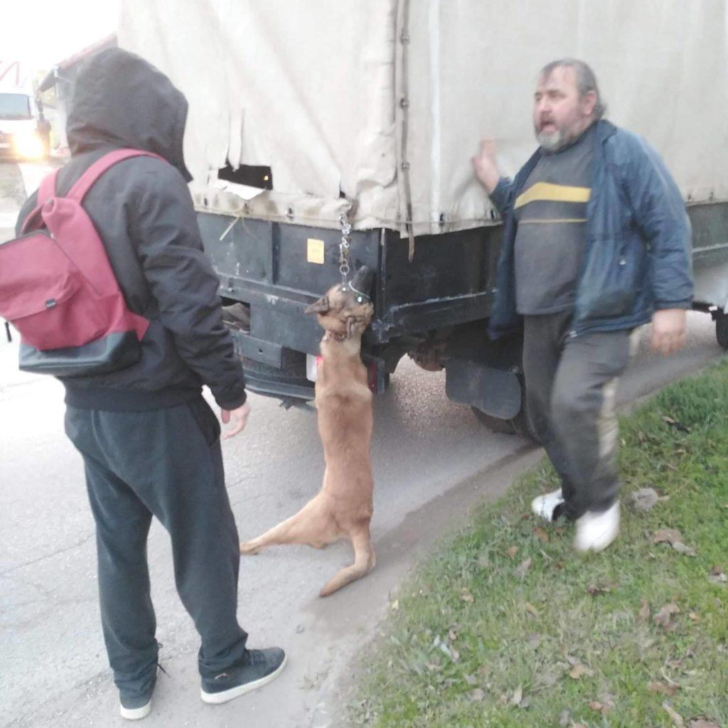MUP: Uhapšen Č.P. iz Subotice zbog ubijanja i zlostavljanja životinja