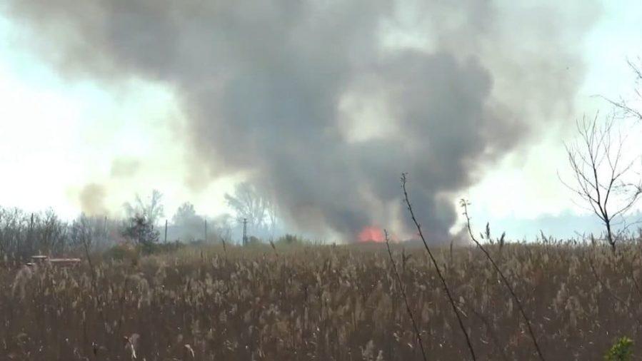 Lokalizovan požar kod Subotice, vatrogasac zadobio opekotine